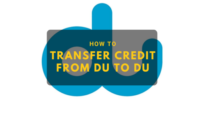 How to transfer credit from du to du